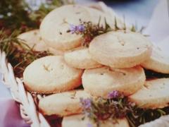 Ricetta antipasti biscotti al formaggio e rosmarino