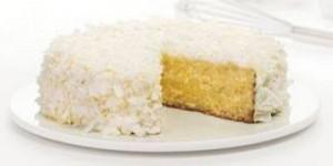 ricetta facile e veloce torta di cocco